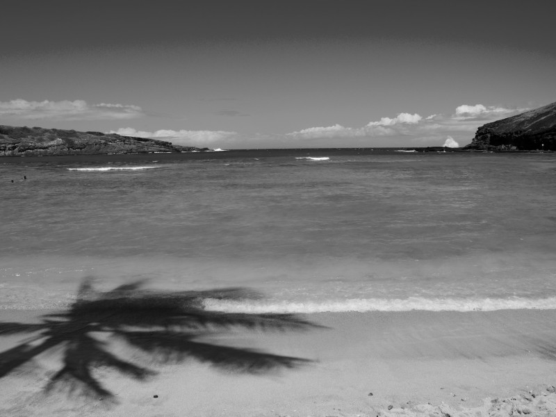 Hawaii_BW