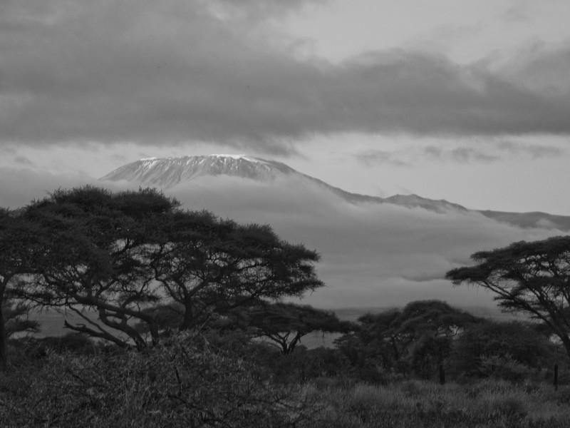 Svítání pod Kilimandžárem_BW